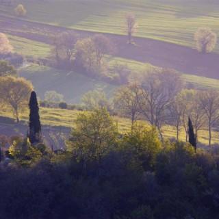 Vista est Apr 2008